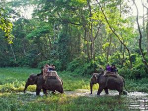 Kathmandu – Pokhara – Chitwan Tour